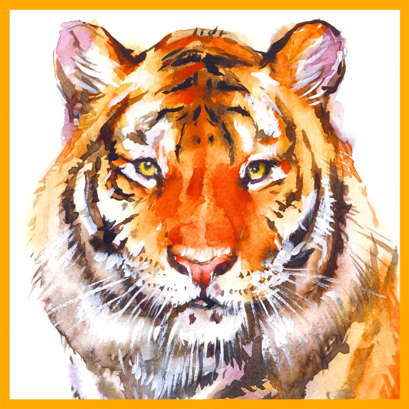 Tiger Bay Club Logo (Illustration of Tiger)